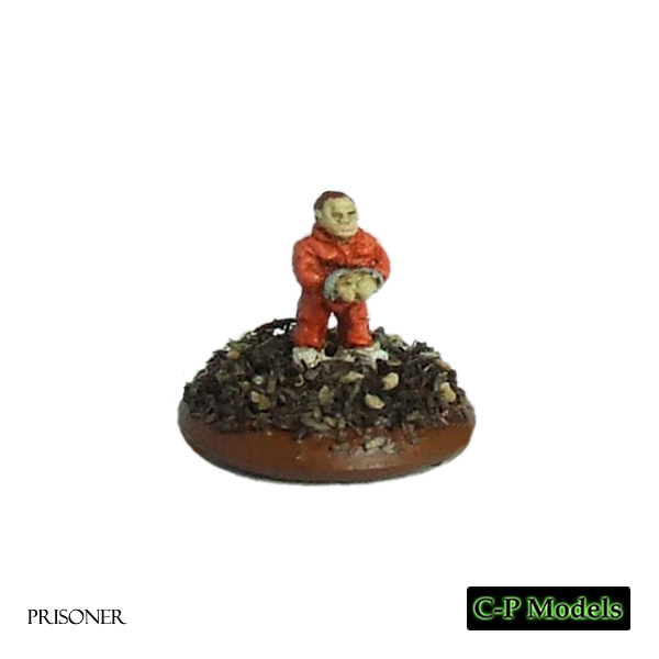 Prisoner 6mm character